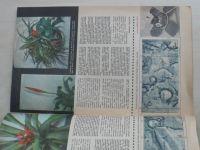 Věda a technika mládeži 9 (1967) ročník XXI.