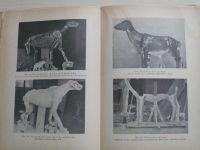 Dr. Štěpánek - Moderní preparace přírodnin (1938) Osvědčené metody přírodopisného sběratelství a pr.