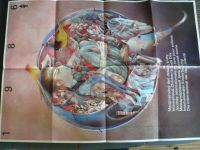 Plakát 50 x 70 cm - Mezinárodný deň detskej knihy 1986 - Dušan Kállay
