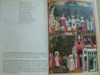 Příběhy z Dalimila - pařížský zlomek latinského překladu (2006)