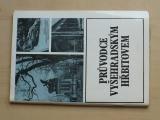 Nechvátal - Průvodce Vyšehradským hřbitovem (1981)