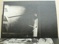 Nezval - Pražský chodec (1981)