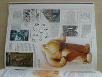 Dětská ilustrovaná encyklopedie - Naše vlast (2000)