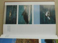 Tichý - Austrálie (do) duše kontinentu (2004)