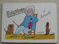 Einstein a housle (1988)
