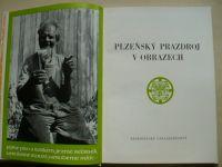 Plzeňský Prazdroj v obrazech (1972)