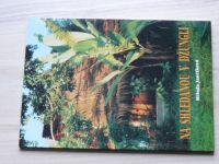 Jančíková - Na shledanou v džungli (1998)