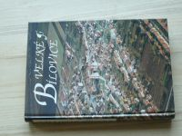Velké Bílovice - dějiny jihomoravské obce (1995)