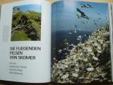 Faszination der grossen zahl - Fascinace velkým počtem - foto příroda