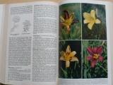 Grunert - Garten blumen von A bis Z - Zahradní květiny od A do Z (1975)