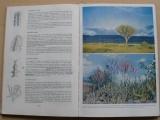 Haage - Das praktische kakteenbuch in farben - Kaktusy v barvě (1962)