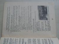 Zpravodaj Velehradu 9 (1976)