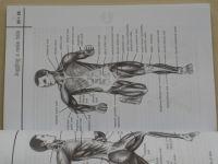 Tvrzník, Soumar - Jogging - Běhání pro zdraví, kondici i redukci váhy (2004)