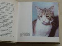 Trojan - Niečo o mačkách.. (1980) slovensky