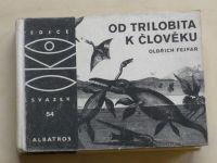 Fejfar - Od trilobita k člověku (1980)