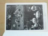 Kurt Gebauer - Atrium Praha 1989 - 10 fotografií