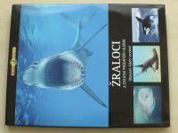 Život zvířat - Žraloci a ostatní predátoři hlubin (2008)