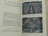 Jirásek - Začínáme u snídaně... Osudy živných plodin (1942)