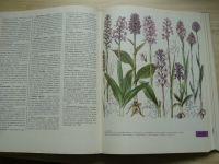 Z našej prírody - Rastliny, horniny, minerály, skameneliny (1984) il. Krejča, slovensky