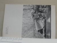 Karel Lidický - Národní galerie v Praze Královský letohrádek září - říjen 1975