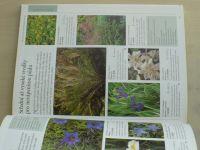 Lancaster - Oblíbené zahradní trvalky - Rostliny vhodné na malé i velké záhony (2004)