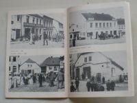 80. let muzea dr. Aleše Hrdličky v Humpolci - Jubilejní sborník 1895 - 1975 (1975)