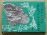 Ing. Fric - Stručný nástin myslivosti (1948)