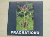Prachaticko (1992) německy