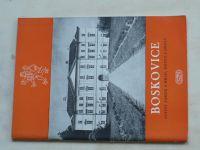 Stehlík - Boskovice - Státní zámek a hrad, město a okolí (1955)