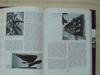Od Rodina po Moora - Slovník západoeurópskeho sochárstva 20. storočia (1973) slovensky