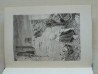 Bezruč - Stužkonoska Modrá (1952) il. Max Švabinský