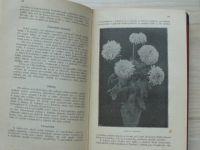 Mikeš - Chrysanthenum - Racionelní kultura (1922) Vaněk Chrudim