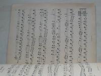 Prvé Kmochovo album (1906)