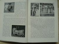Matějček - Dějiny umění v obrysech (1951)