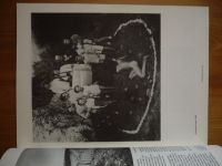 Fotografie 1 (1991) ročník XLII.