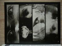 Fotografie 79 - Revue výtvarné fotografie 1-4 (1979) ročník XXIII.