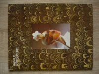 Fotografie 77 - Revue 1-4 (1977) ročník XXI. (chybí číslo 4, 3 čísla)