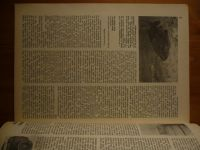 Vodní revue - Potápěč 1 (1991) ročník XXVIII.