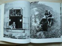 Pflaum, Pable - WIEN - Stadt zwischen Welten (1972) VÍDEŇ - město mezi světy