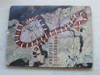 Staněk - Ungiftige schlangen (1962)