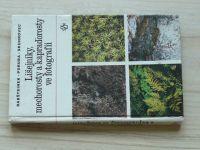 Rabštejnek, Poruba, Skuhrovec - Lišejníky, mechorosty a kapraďorosty ve fotografii (1987)