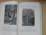 Domin - Gymnospermae (1938) soust. přehled rostl. nahosemenných