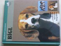 Lanyonová - Bígl (2001)