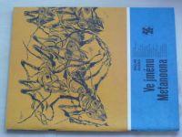 Karavana 195 - Klička - Ve jménu Metanoona (1986)