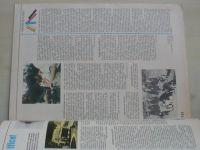 Věda a technika mládeži 24 (1981) ročník XXXV.