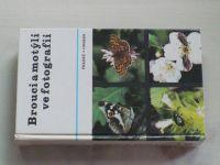 Pradáč, Hrabák - Brouci a motýli ve fotografii (1982)