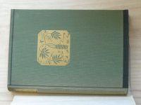 Rayment - Nebeské údolí (Symposion 1947) dřevoryty Florian
