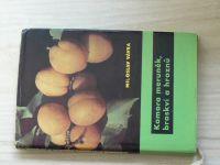 Vávra - Komora meruněk, broskví a hroznů (1963)