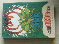 Bragin - V zemi obřích trav (1965)