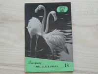 Fotorat 13 - Gaudig - Tierfang mit der Kamera (1957)